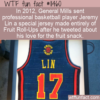 WTF Fun Fact – Fruit Roll-Up Jersey