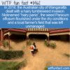 WTF Fun Fact – Hairy Panic In Oz