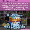 WTF Fun Fact –  Hungry Hungry Hippos World Championship