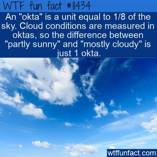 WTF Fun Fact - Okta