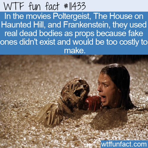 WTF Fun Fact - Real Dead Body Props