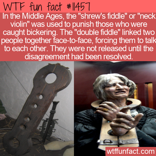 WTF Fun Fact - Shrew's Fiddle