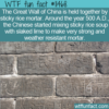 WTF Fun Fact – Sticky Rice Mortar