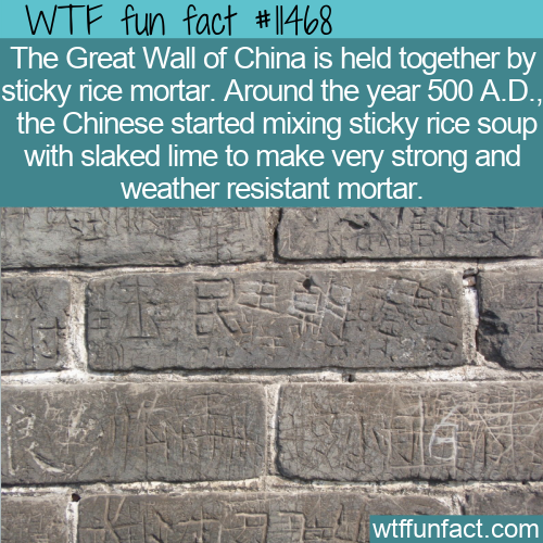 WTF Fun Fact - Sticky Rice Mortar