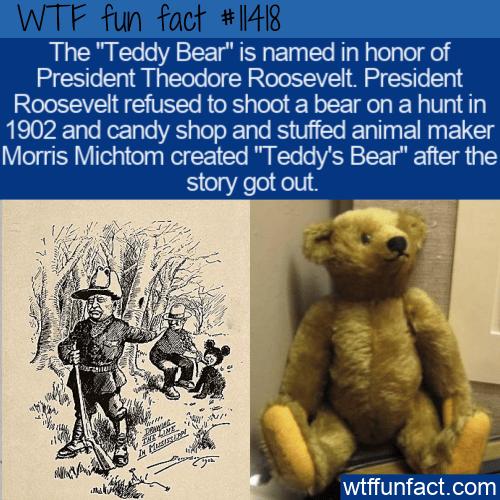 WTF Fun Fact - Teddy's Bear