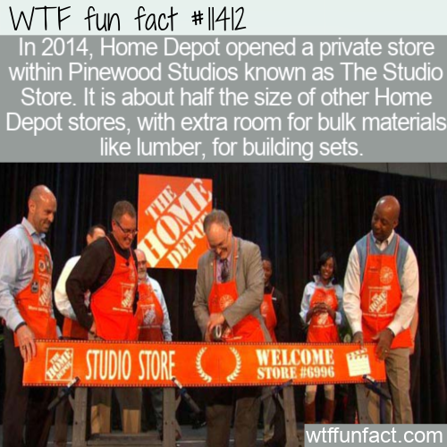 WTF Fun Fact - The Home Depot Studio Store