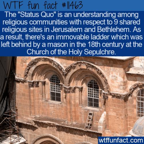WTF Fun Fact - The Status Quo