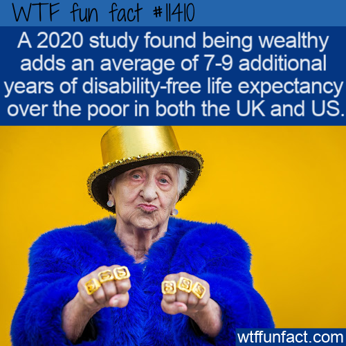 WTF Fun Fact - Wealth Improves Life Expectancy