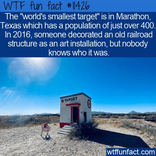 WTF Fun Fact - World's Smallest Target