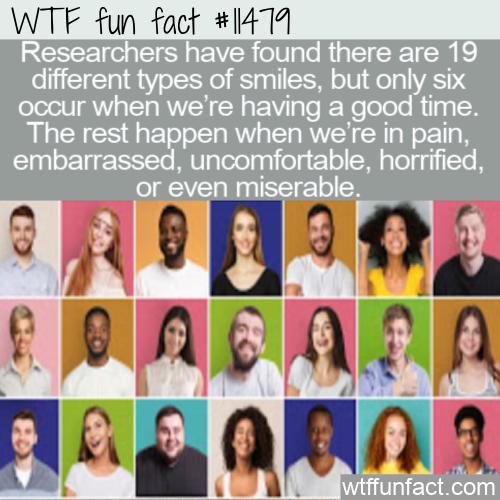 WTF Fun Fact - 19 Different Smiles