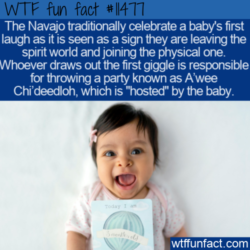 WTF Fun Fact - A'wee Chi'deedloh
