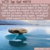 WTF Fun Fact – Baikal Zen