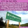 WTF Fun Fact – Bridgeville On Ebay