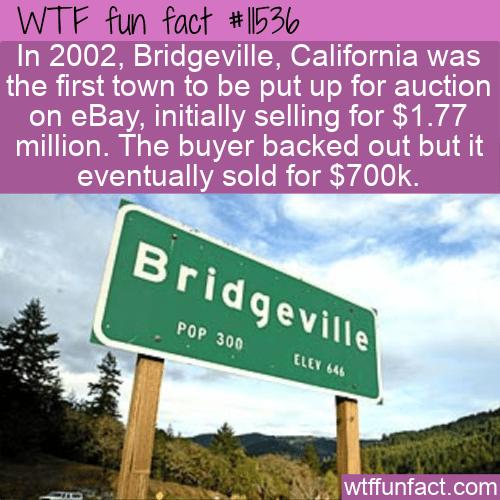 WTF Fun Fact - Bridgeville On Ebay