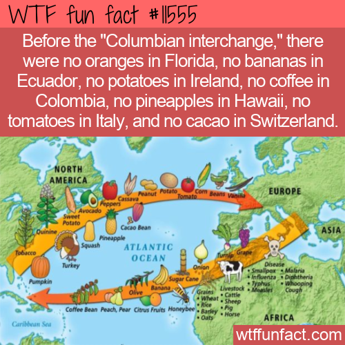 WTF Fun Fact - Columbian Interchange
