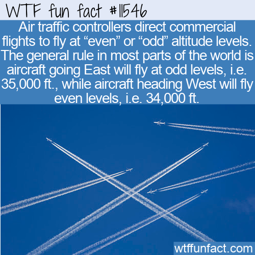 WTF Fun Fact - East is Odd, West is Even Odder