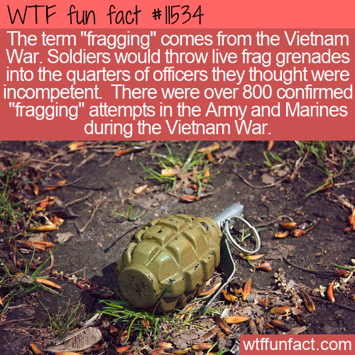 WTF Fun Fact - Fragging