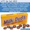 WTF Fun Fact – Milk Duds Name