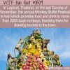 WTF Fun Fact – Monkey Buffet Festival