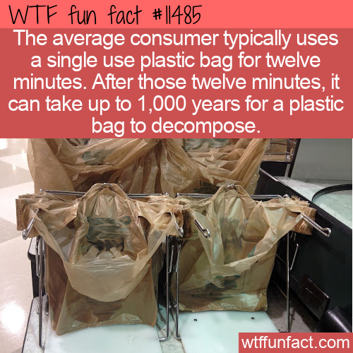 WTF Fun Fact - Plastic Bag Lifespan