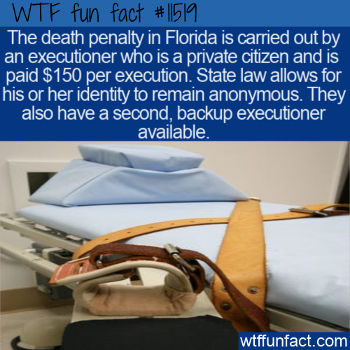 WTF Fun Fact - Private Citizen Executioner