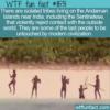 WTF Fun Fact – Sentinelese