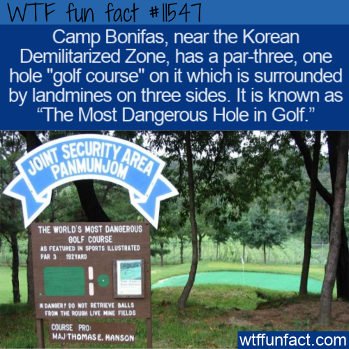 WTF Fun Fact - The Most Dangerous Hole In Golf