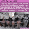 WTF Fun Fact – What Is Venice Built On?