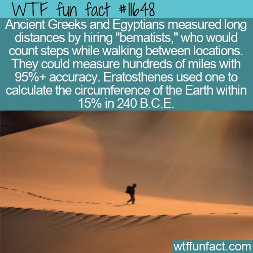 WTF Fun Fact - Bematist