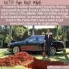 WTF Fun Fact – Billionaire Plans To Bury Bentley