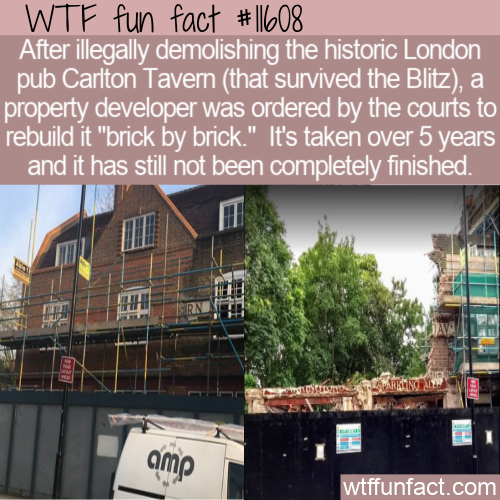 WTF Fun Fact - Carlton Tavern