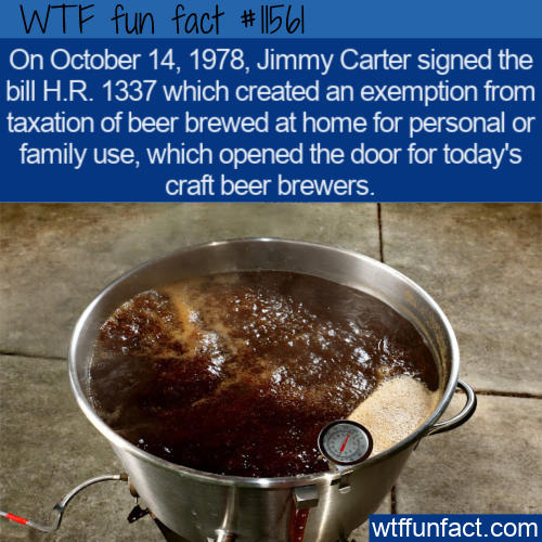 WTF Fun Fact - Craft Beer Opening