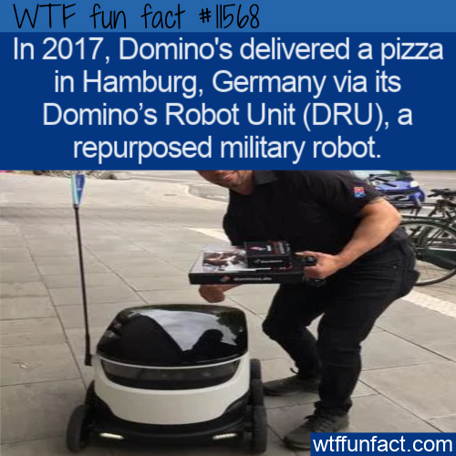 WTF Fun Fact - Domino's Robot Unit