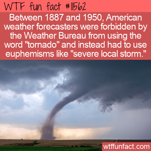 WTF Fun Fact - Don't Say Tornado