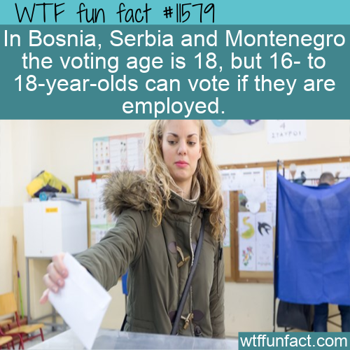 WTF Fun Fact - Interesting Voting Age Addendum