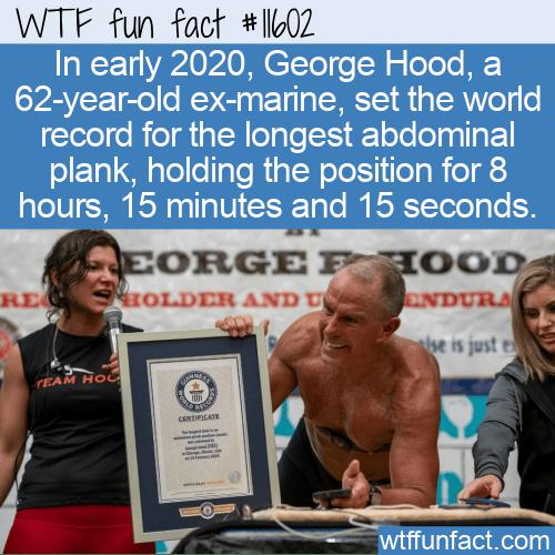 WTF Fun Fact - Longest Abdominal Plank