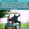 WTF Fun Fact – Marriage Dare