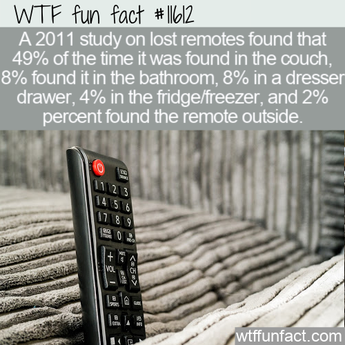 WTF Fun Fact - Missing Remote Study