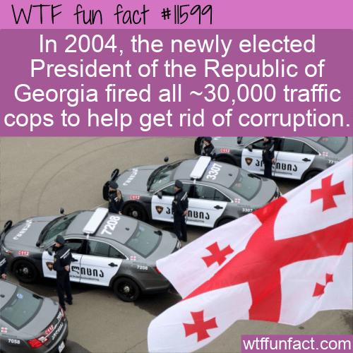 WTF Fun Fact - No More Traffic Cops