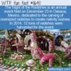 WTF Fun Fact – Noche de Rábanos