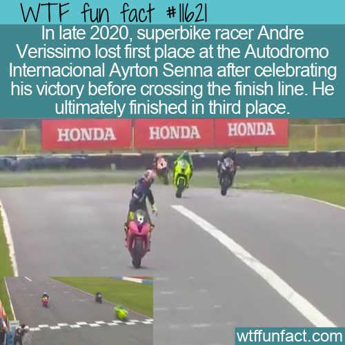WTF Fun Fact - Superbike Racer Celebrates Too Early