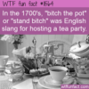 WTF Fun Fact – Tea Party Slang