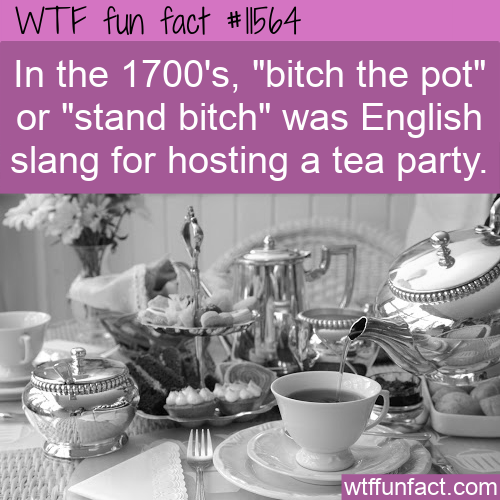 WTF Fun Fact - Tea Party Slang
