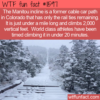 WTF Fun Fact – The Manitou Incline