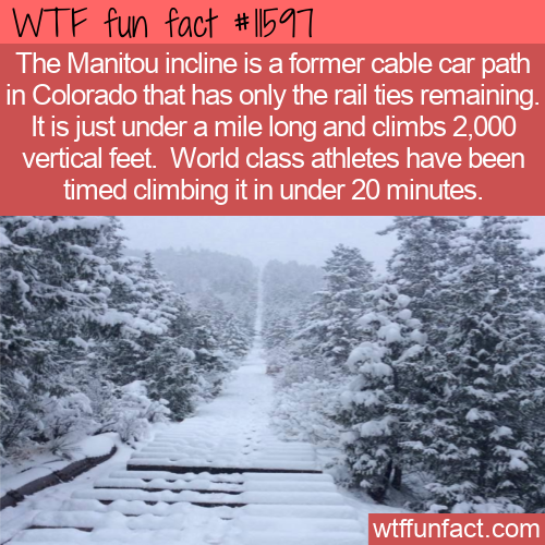 WTF Fun Fact - The Manitou Incline