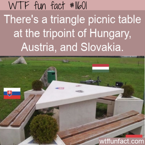 WTF Fun Fact - Tripoint Picnic Table