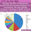 WTF Fun Fact – Very Popular Nguyen