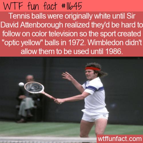 WTF Fun Fact - White Tennis Balls