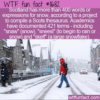 WTF Fun Fact – 421 Words For Snow
