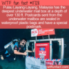 WTF Fun Fact – Deepest Underwater Mailbox